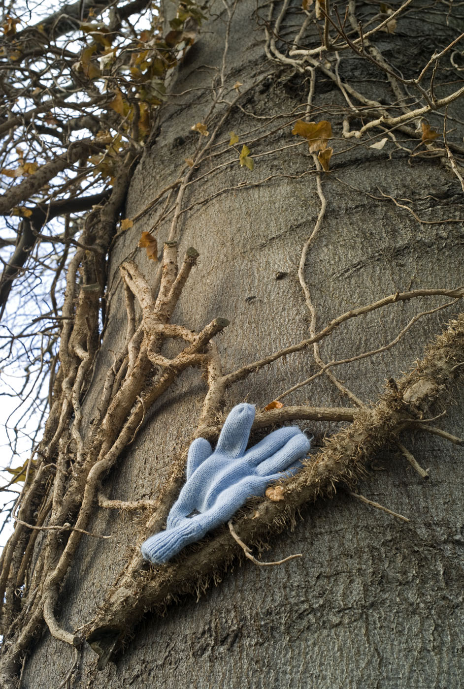 Tree Glove Clifton